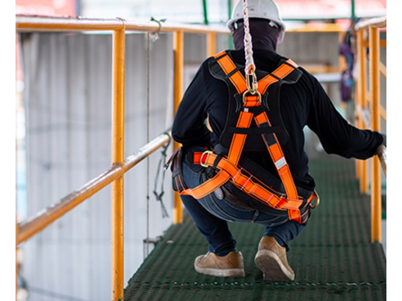 Especialistas en material para trabajo en vertical, poda en altura, escalada y rescate